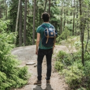 When taking a walk in nature, you experience the benefit of forest bathing.