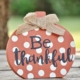 Thanksgiving was established in gratitude for overcoming challenges. With Thanksgiving approaching in this very challenging year, an attitude of gratitude is healthful.